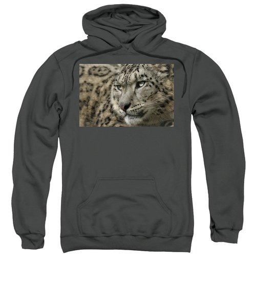 Eyes Of A Snow Leopard Sweatshirt