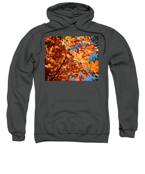 Fall Colors 2 Sweatshirt