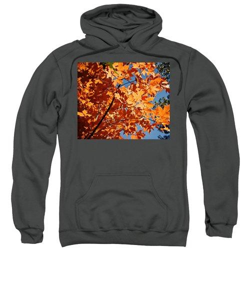 Fall Colors 2 Sweatshirt