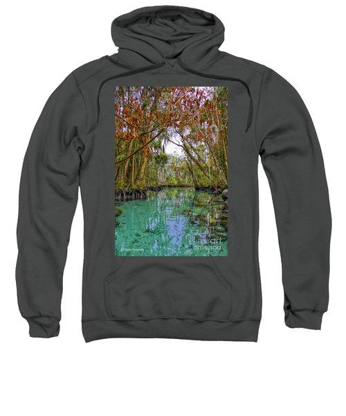 Fall Colors Along Three Sisters Spring Run Sweatshirt