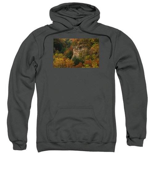 Fall Light Sweatshirt