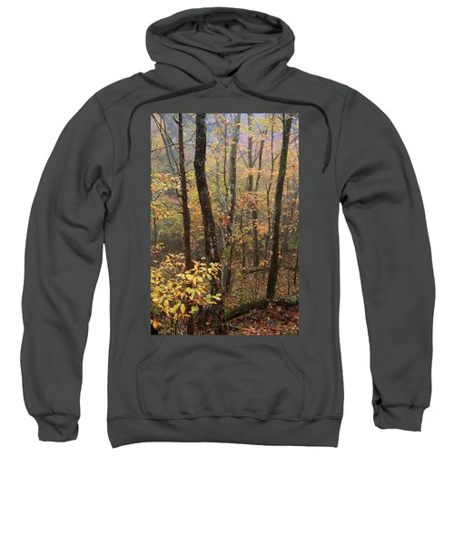 Fall Mist Sweatshirt