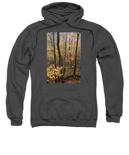 Fall Mist Sweatshirt