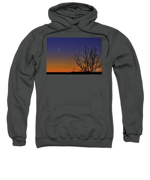 Favorite Moon Sweatshirt