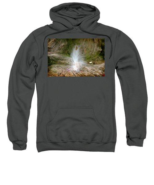 Feather Sweatshirt