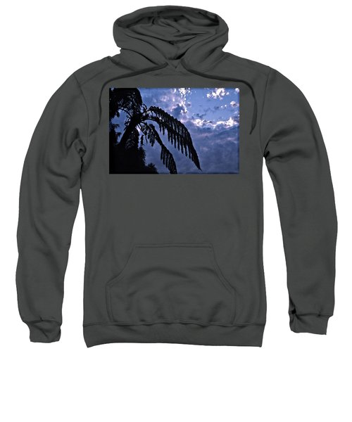 Fern At Twilight Sweatshirt