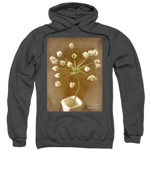 Firecracker Sweatshirt by Peggy Hughes