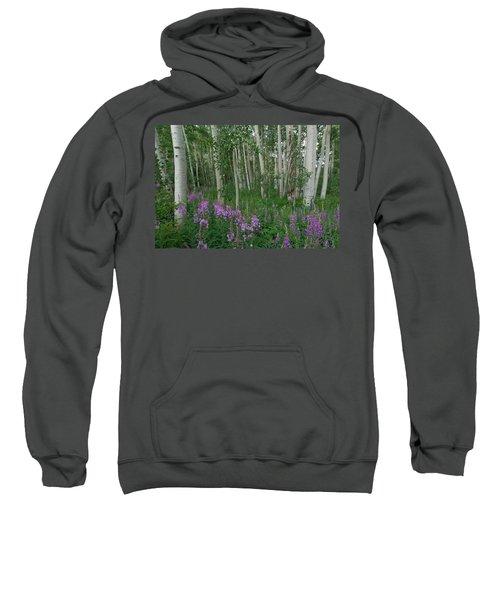 Fireweed And Aspen Sweatshirt