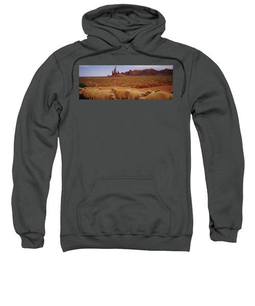 Flock Of Sheep In An Arid Landscape Sweatshirt