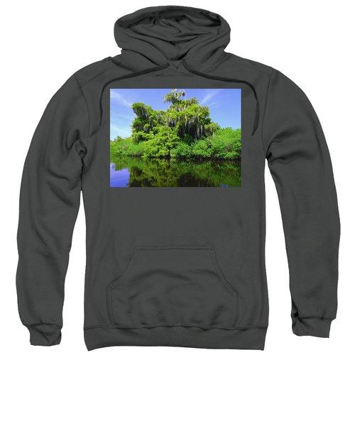 Florida Swamps Sweatshirt