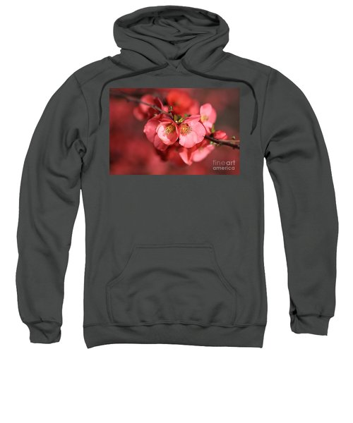 Flowering Quince Sweatshirt