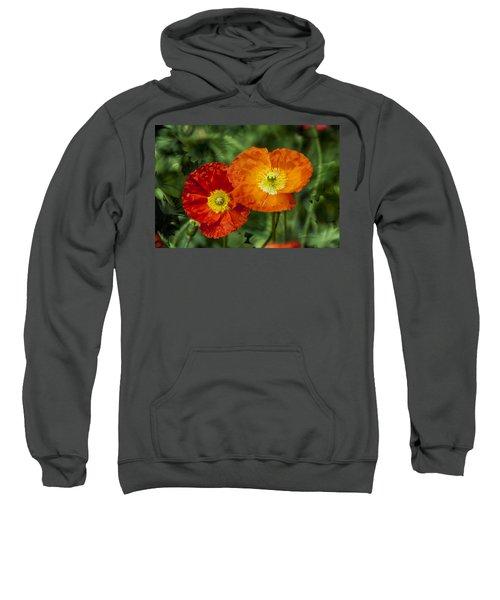 Flowers In Kodakchrome Sweatshirt