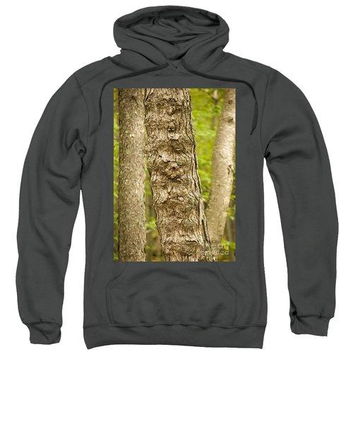 Fluted Tree Sweatshirt