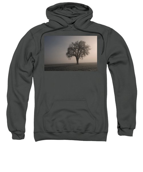 Foggy Morning Sunshine Sweatshirt