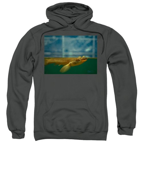 Four Eyes Sweatshirt