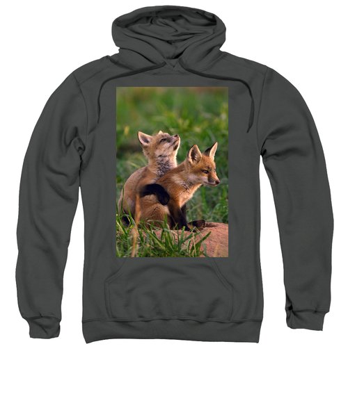 Fox Cub Buddies Sweatshirt