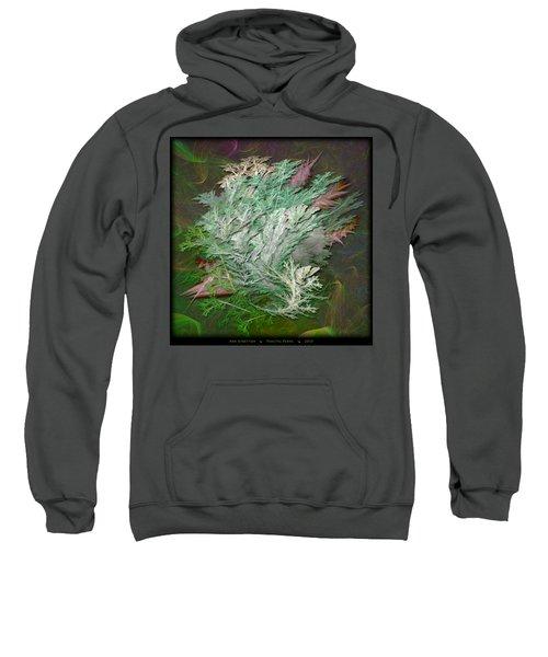 Fractal Ferns Sweatshirt
