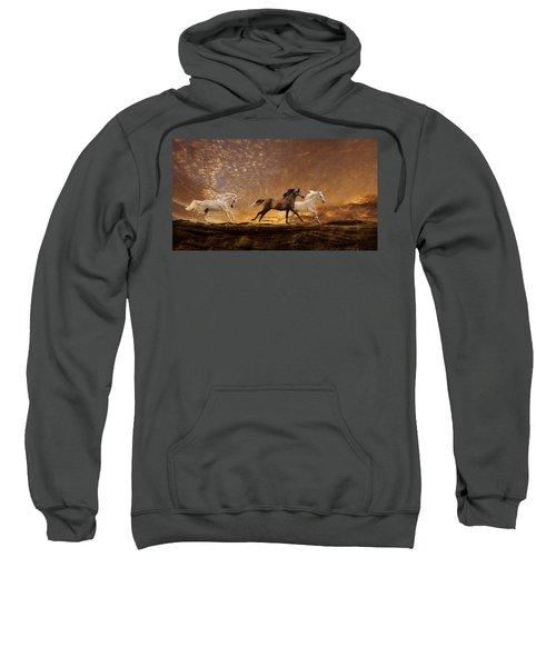 Freed Spirits Sweatshirt