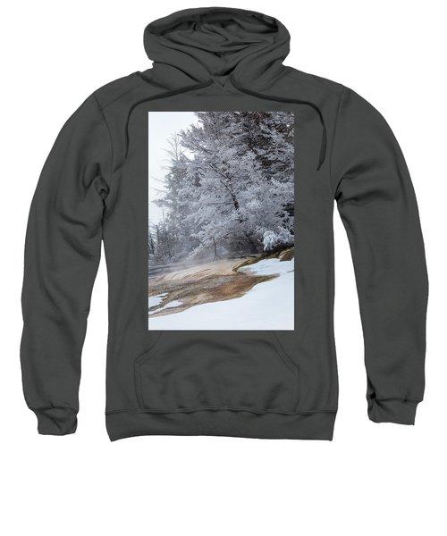 Frozen Tree Sweatshirt