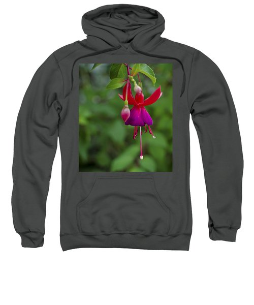 Fuschia Flower Sweatshirt