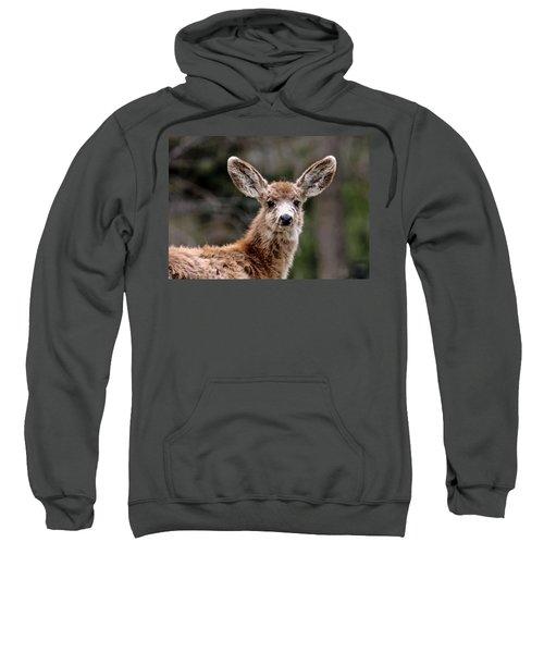 Fuzzy Fawn Sweatshirt