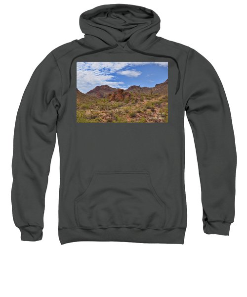 Gates Pass Scenic View Sweatshirt