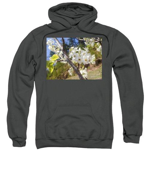 Georgia Blossoms Sweatshirt