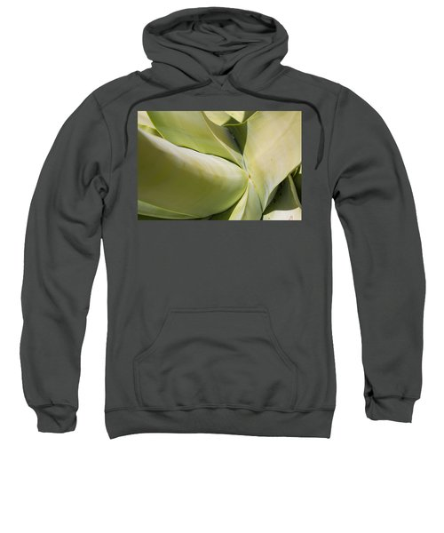 Giant Agave Abstract 9 Sweatshirt