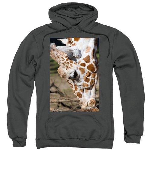 Giraffe 7d8899 Sweatshirt