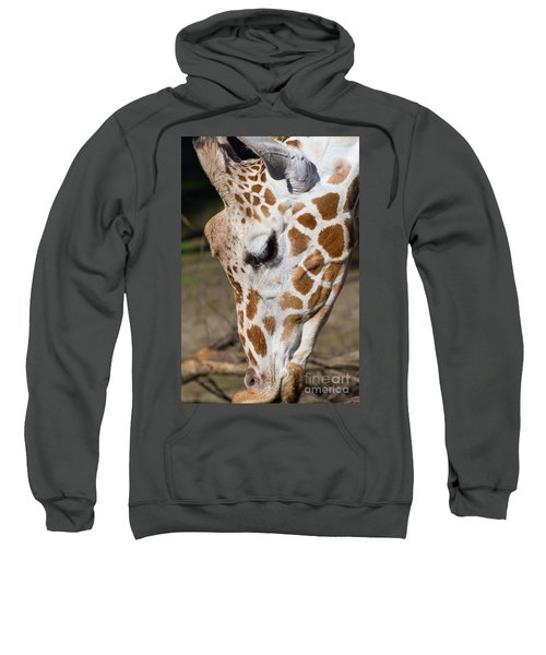 Giraffe 7d8902 Sweatshirt