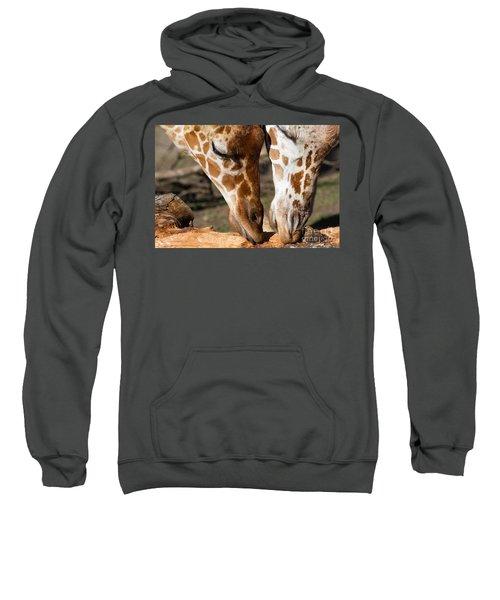 Giraffe 7d8917 Sweatshirt