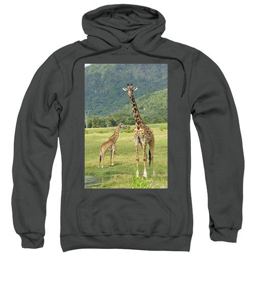 Giraffe Mother And Calftanzania Sweatshirt