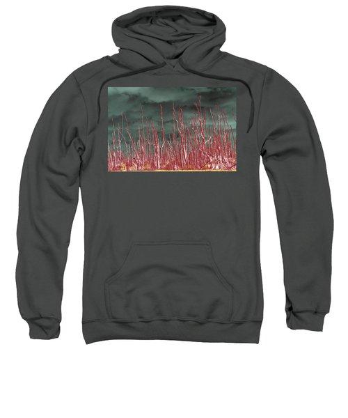 Glowing Trees 2 Sweatshirt