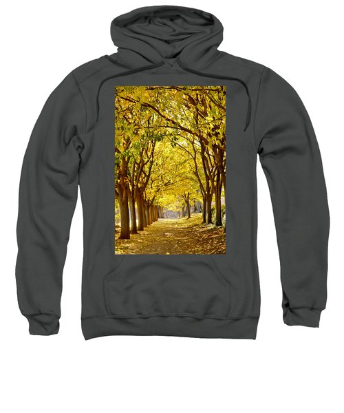 Golden Canopy Sweatshirt