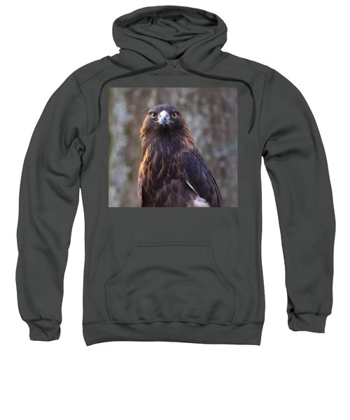 Golden Eagle 4 Sweatshirt
