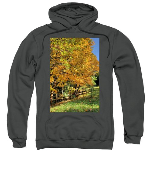 Golden Fenceline Sweatshirt