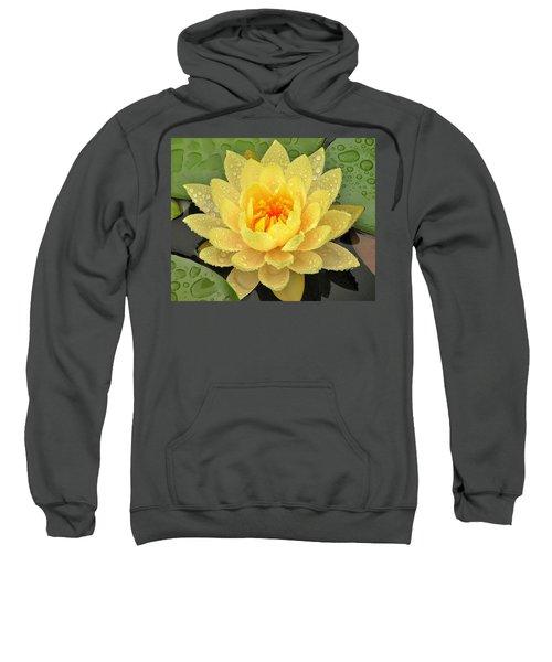 Golden Lily Sweatshirt