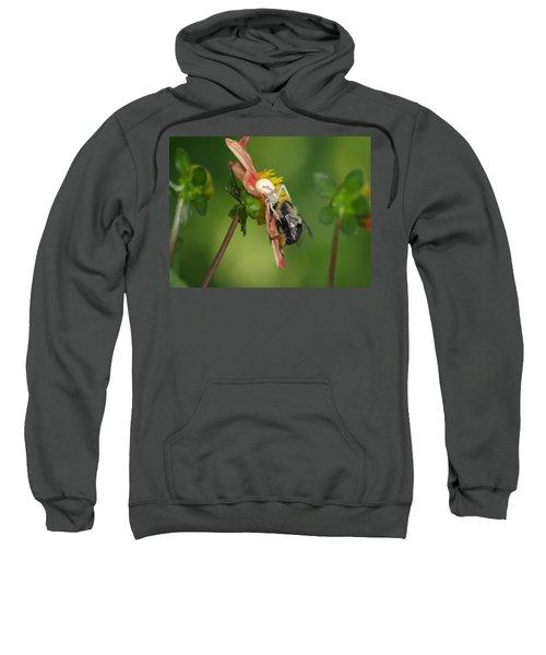 Goldenrod Spider Sweatshirt