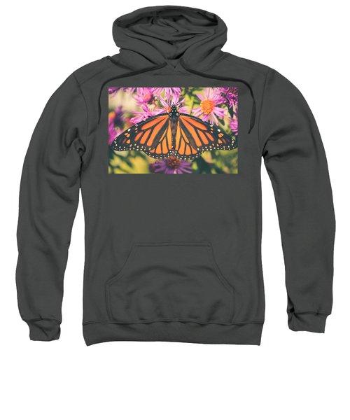 Grace And Beauty Sweatshirt