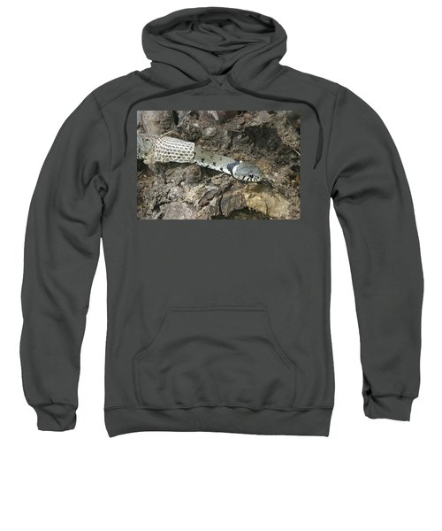 Grass Snake Shedding Sweatshirt