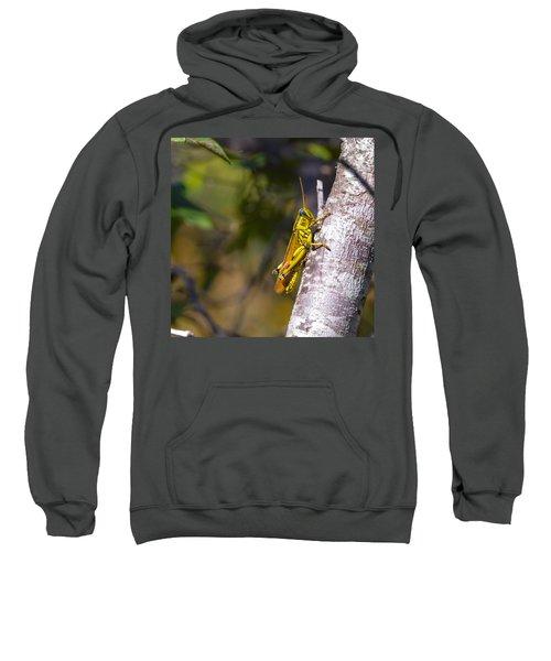 Grasshopper Sweatshirt