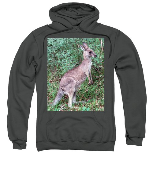 Grazing In The Grass Sweatshirt by Ellen Henneke