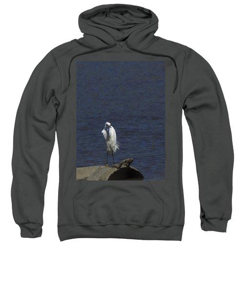 Great Egret Sweatshirt