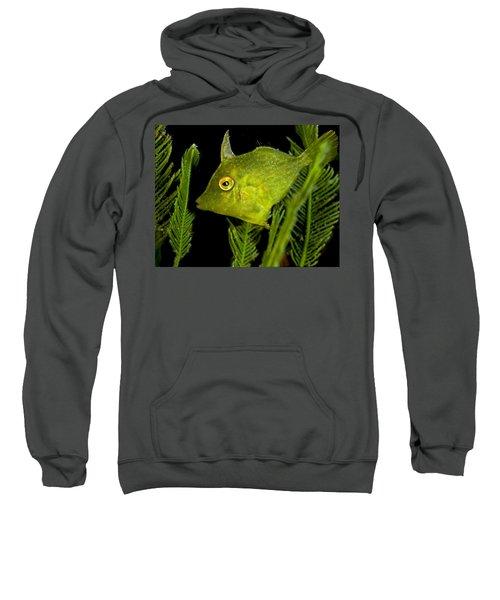 Green Beauty Sweatshirt