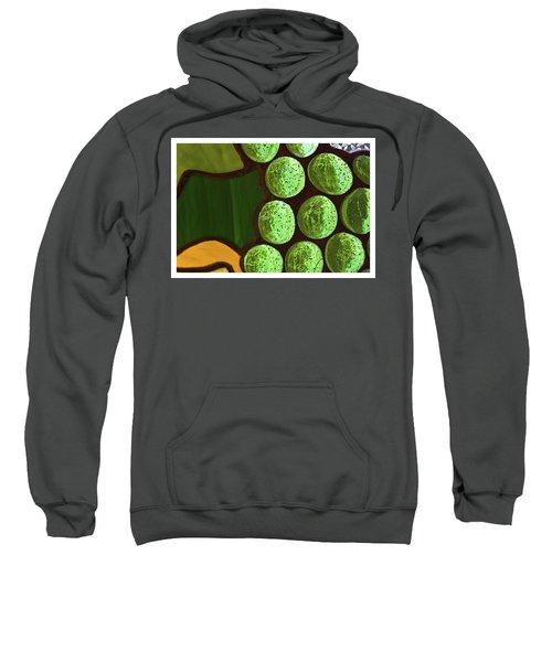 Green Yellow Sweatshirt