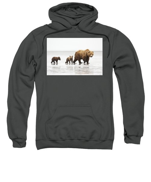 Grizzly Bear Mother And Cubs Lake Clark Sweatshirt