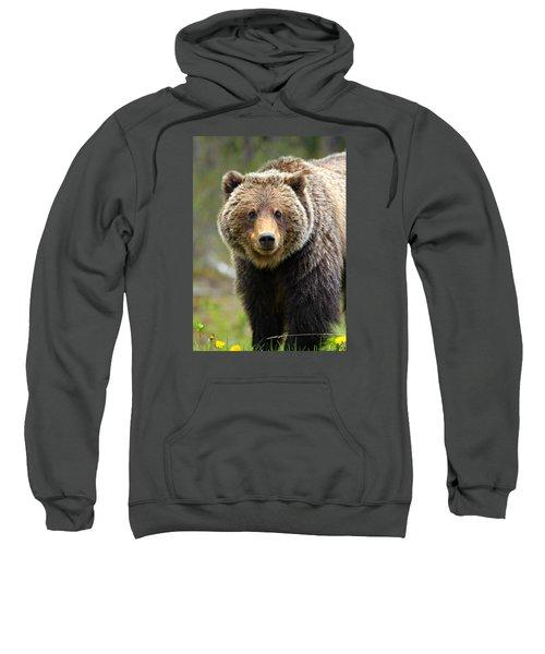 Grizzly Sweatshirt