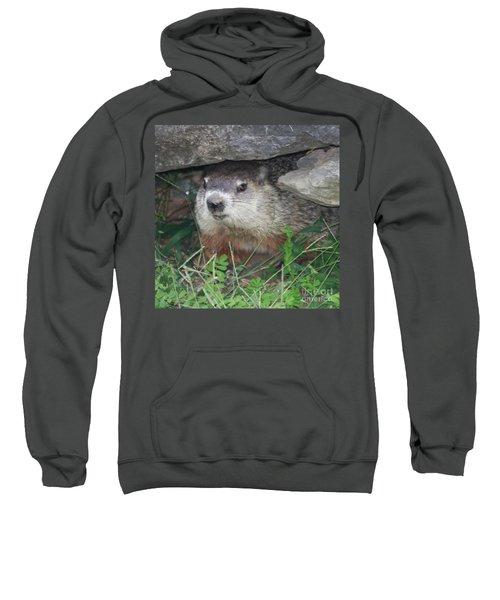 Groundhog Hiding In His Cave Sweatshirt