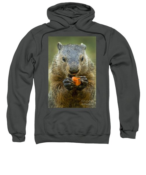 Groundhogs Favorite Snack Sweatshirt