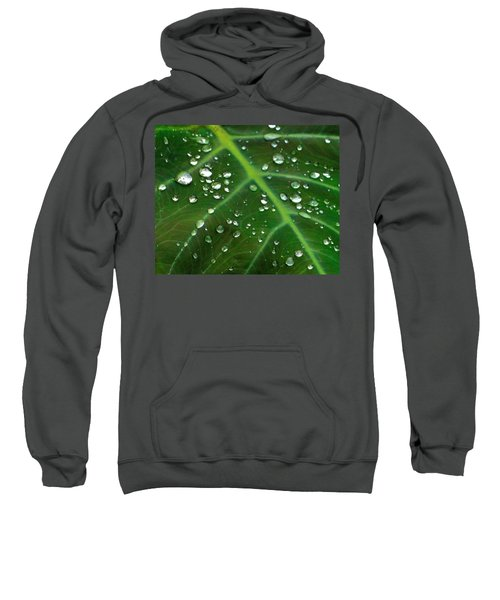 Hanging Droplets Sweatshirt